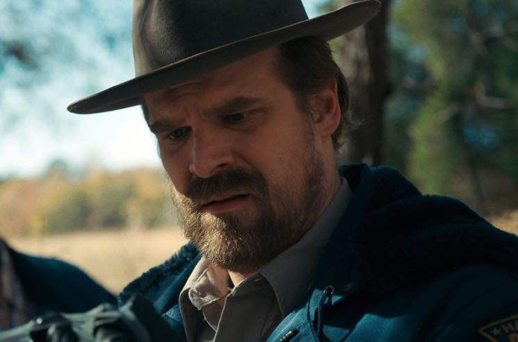 'Stranger Things' Star David Harbour Will Officiate a Wedding If He Gets Enough Retweets