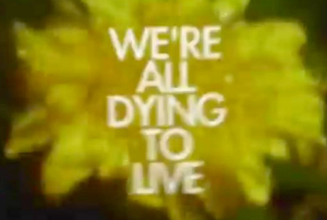 Rich Aucoin 'We're All Dying to Live' (film)