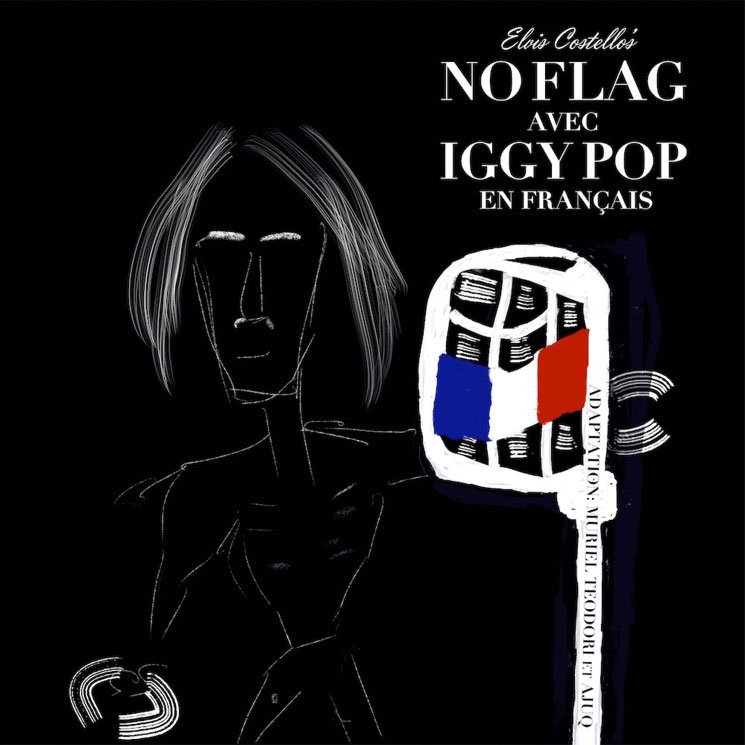 Hear Iggy Pop Cover Elvis Costello's 'No Flag' in French