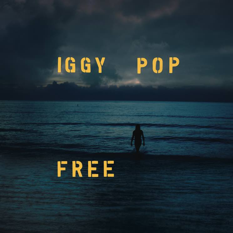 "​Iggy Pop Shares New Song ""Sonali"""