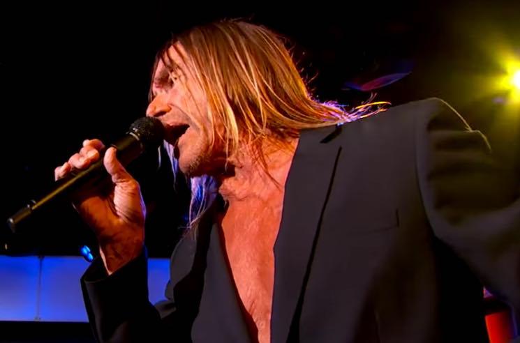 Iggy Pop Performs 'Sunday' on 'Jimmy Kimmel Live'