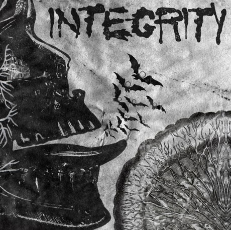 Integrity Detail 'Suicide Black Snake'