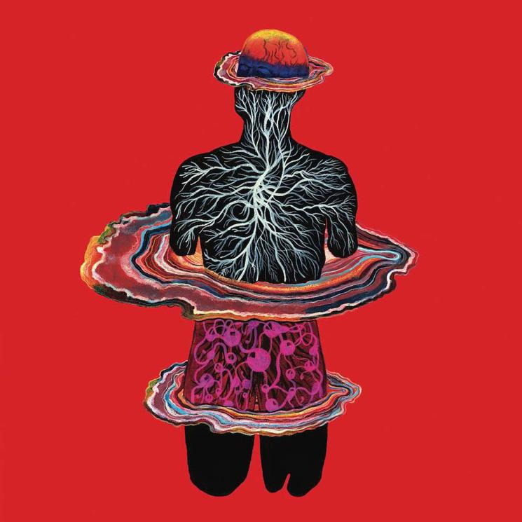 Intervals Return with New Album 'Circadian'