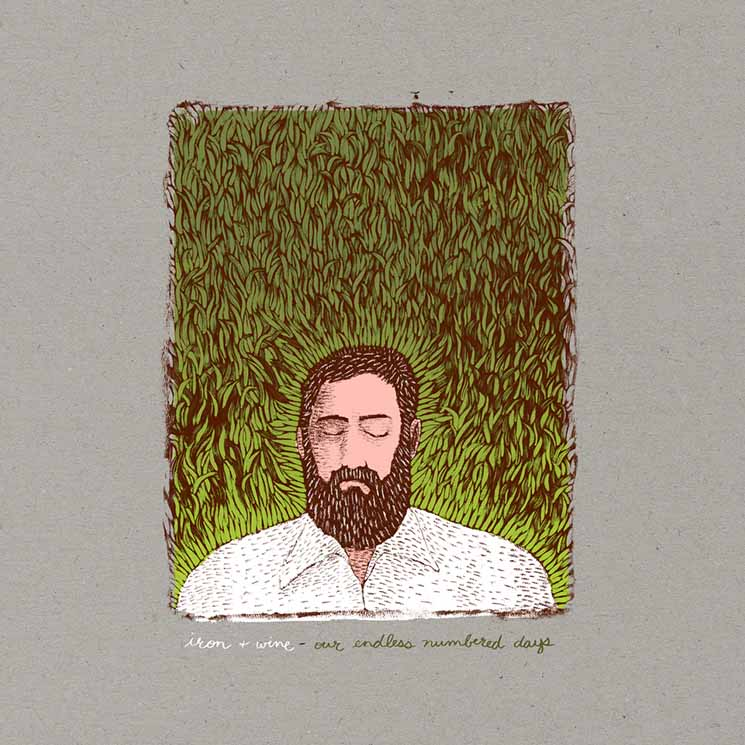 Iron & Wine Our Endless Numbered Days (Deluxe Edition)