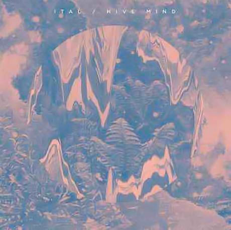 Mi Ami's Daniel-Martin McCormick Preps Ital Album for Planet Mu