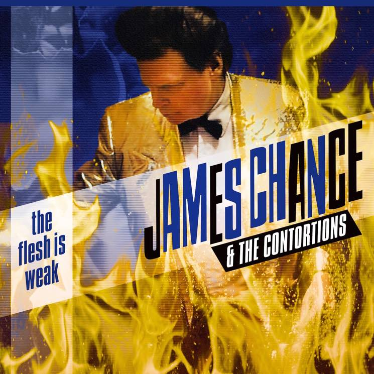James Chance & the Contortions The Flesh is Weak