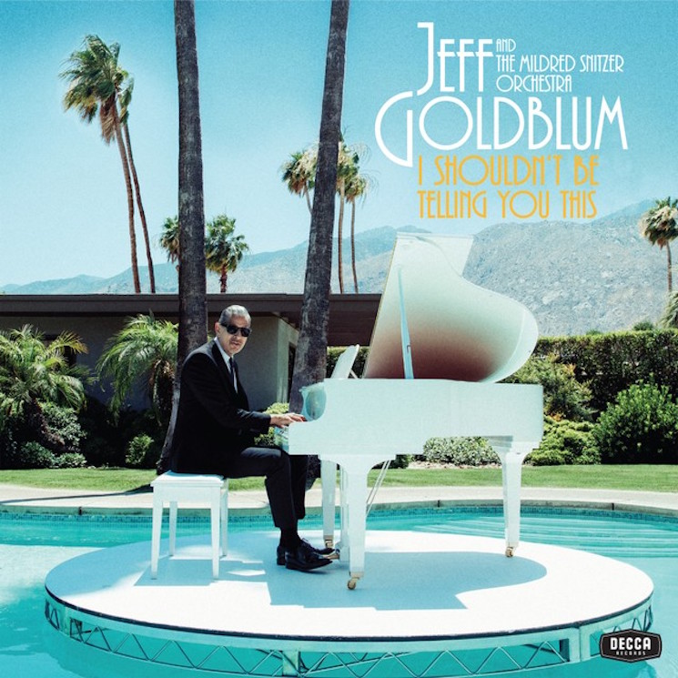 Jeff Goldblum Taps Sharon Van Etten, Fiona Apple, Anna Calvi for Piano Duets Album