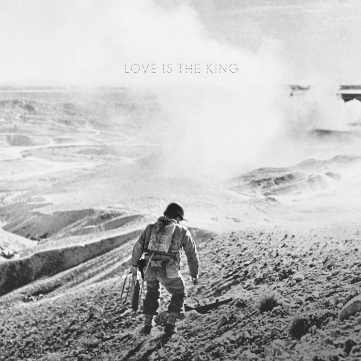 Jeff Tweedy Announces Solo Album 'Love Is the King'