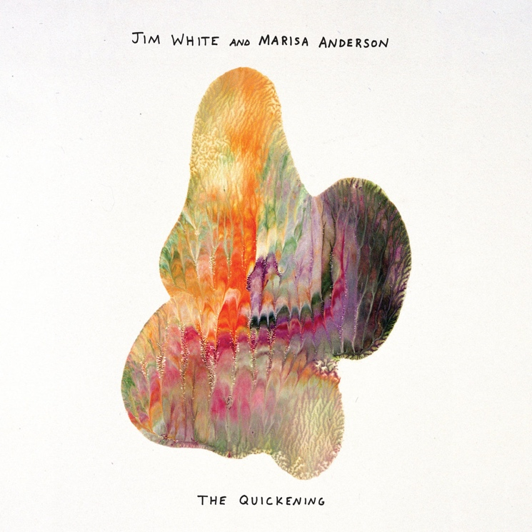 Jim White and Marisa Anderson Pack Adventurous Sounds into a Small Package on 'The Quickening'