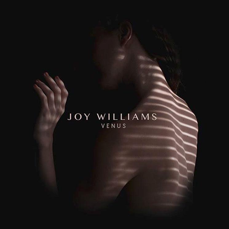 Joy Williams Details 'Venus'