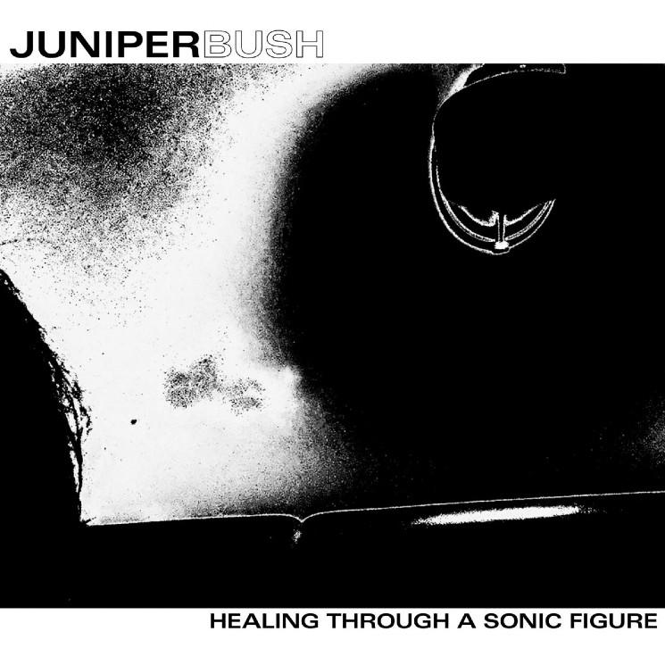 Winnipeg Shoegazers Juniper Bush Are Delightfully Dark on 'Healing Through a Sonic Figure'