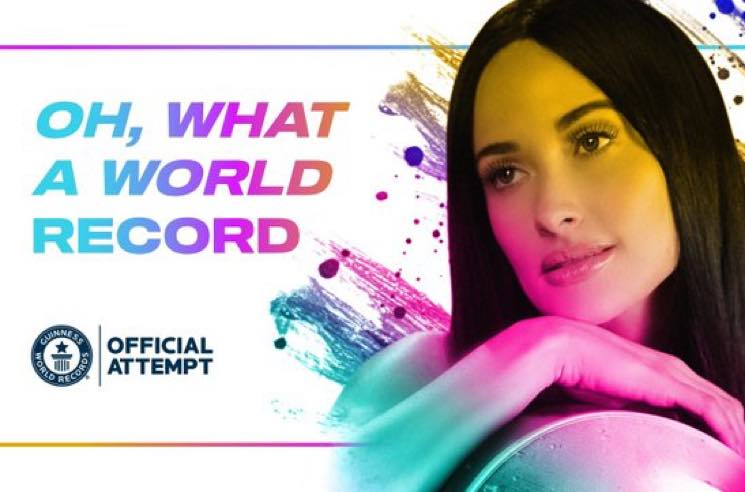 "​Kacey Musgraves Wants to Set the Guinness Record for ""World's Largest Display of Colouring Pages"""