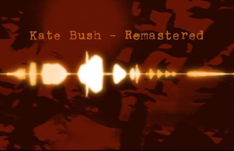 Kate Bush Announces Vinyl Reissues of Her Complete Back Catalogue
