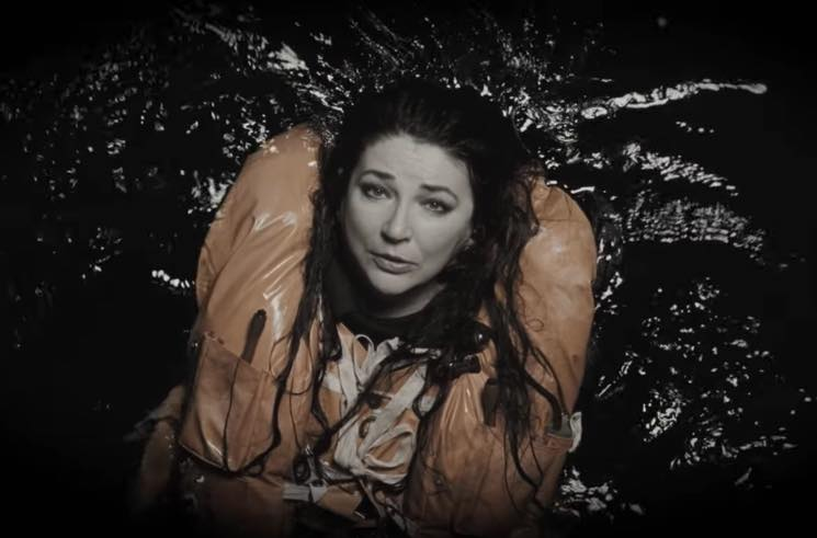 Kate Bush 'And Dream of Sheep' (video)