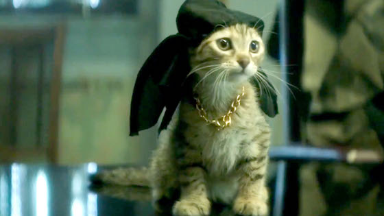 Keanu Reeves Begged to Voice the Cat in 'Keanu'