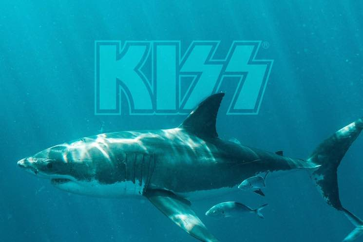 KISS Are Playing an Underwater Concert for Sharks