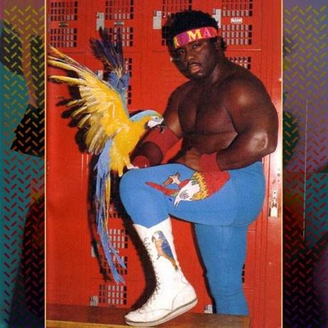 "Shad ""Koko B. Ware"" (""Strictly 4 My Jeeps"" dub)"