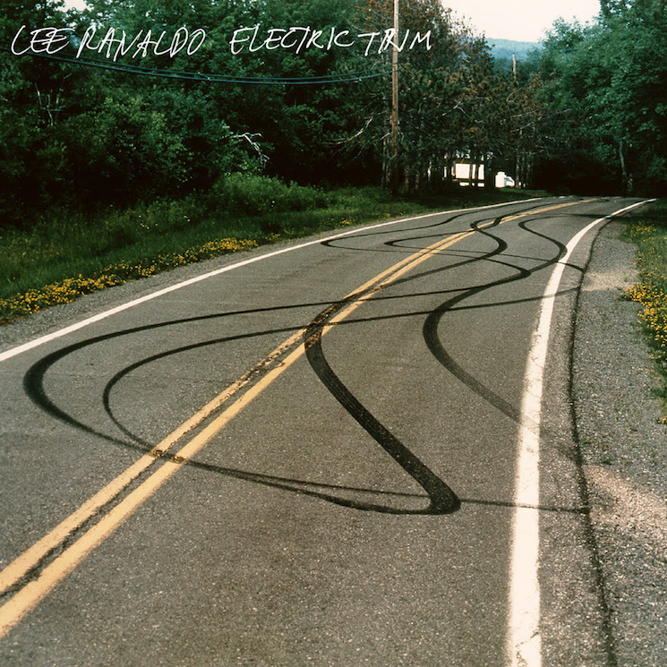 Lee Ranaldo Electric Trim