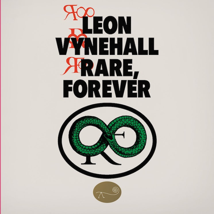 Leon Vynehall Finds Himself to Be the Ultimate Muse on 'Rare, Forever'