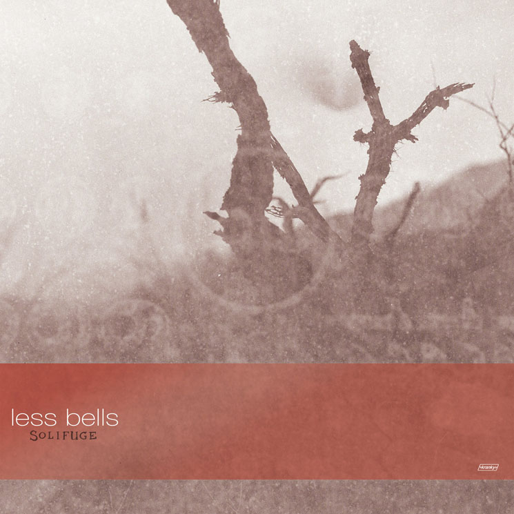 Less Bells Solifuge