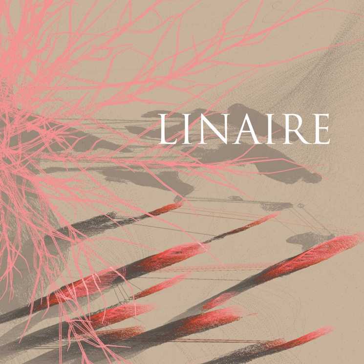 Linaire Arrives Fully-Formed on Self-Titled Debut