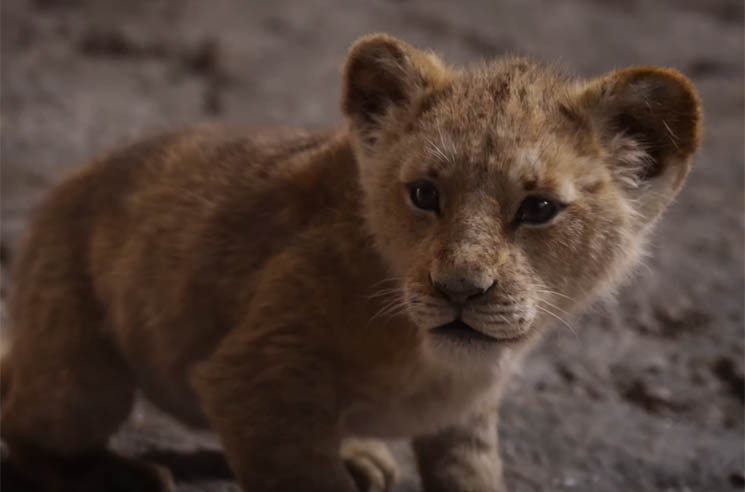 ​Watch the Epic Trailer for Disney's Live-Action 'Lion King'