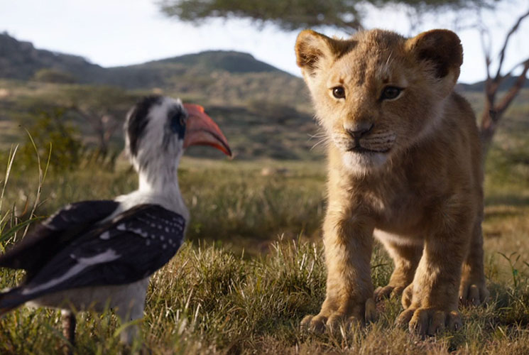 'The Lion King' Is 'Planet Earth' Minus David Attenborough Directed by Jon Favreau