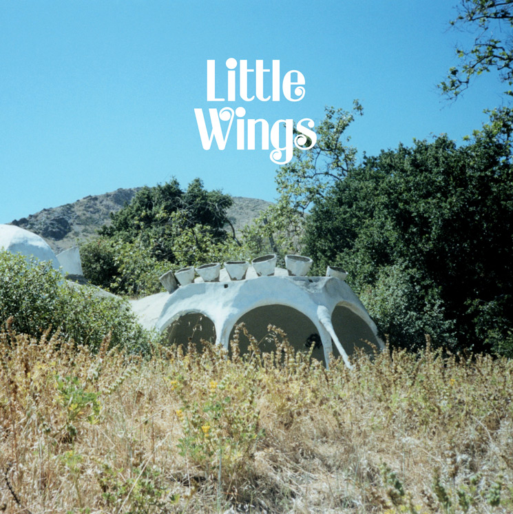Little Wings Treats His 'Wonderue' Album to Vinyl Reissue