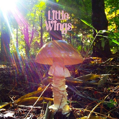Little Wings Returns with New Double-LP: 'LAST'