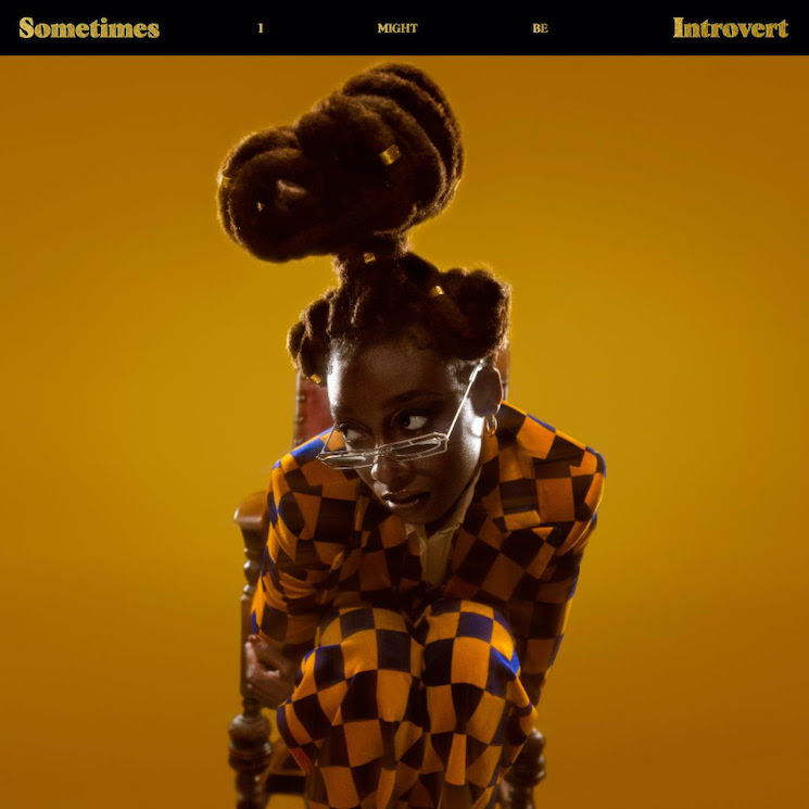 Little Simz Details New Album 'Sometimes I Might Be Introvert'