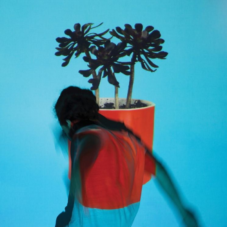​Local Natives Announce 'Sunlit Youth' Album, Share 'Villainy'