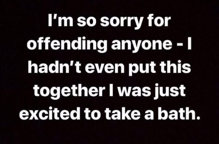 Lorde Apologizes for Captioning Bathtub Photo with Whitney Houston Lyrics