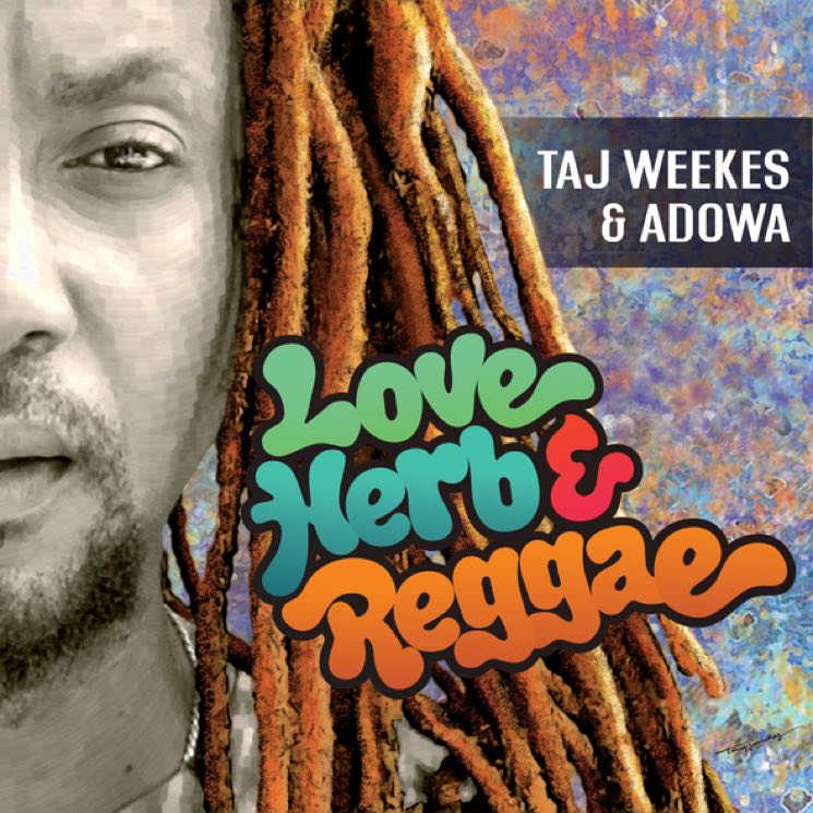 Taj Weekes & Adowa Love Herb & Reggae
