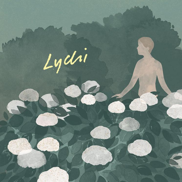 Lychi 'Lychi' (EP stream)