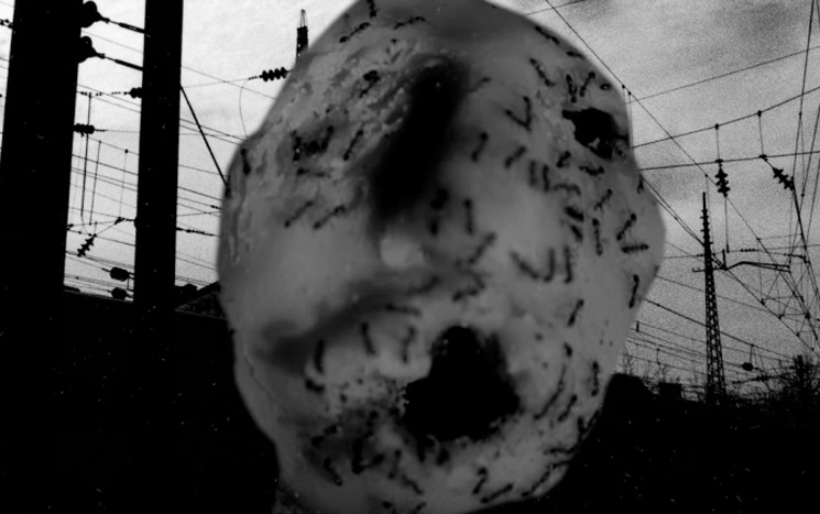 David Lynch Shares 'Ant Head' Short Film