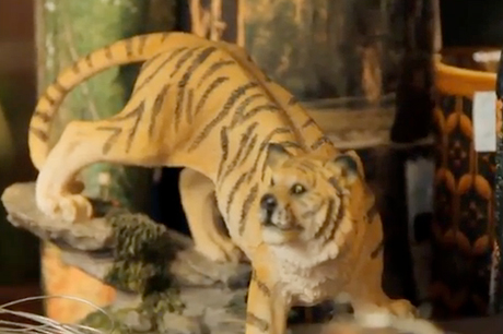 "Stephen Malkmus and the Jicks ""Tigers"" (video)"