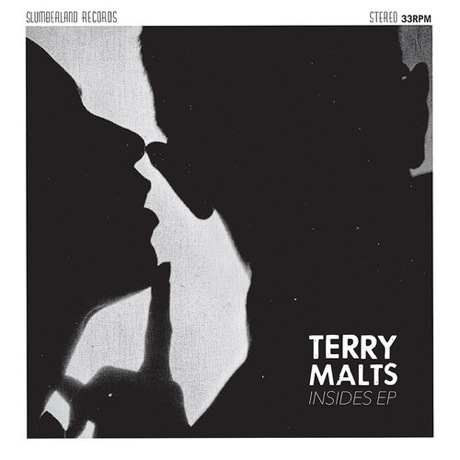 "Terry Malts ""Let You In"""