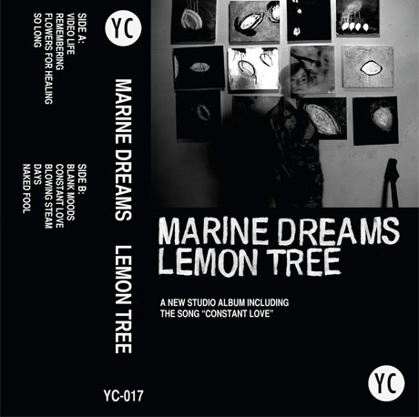 Marine Dreams Releases New Album for You've Changed Records Anniversary
