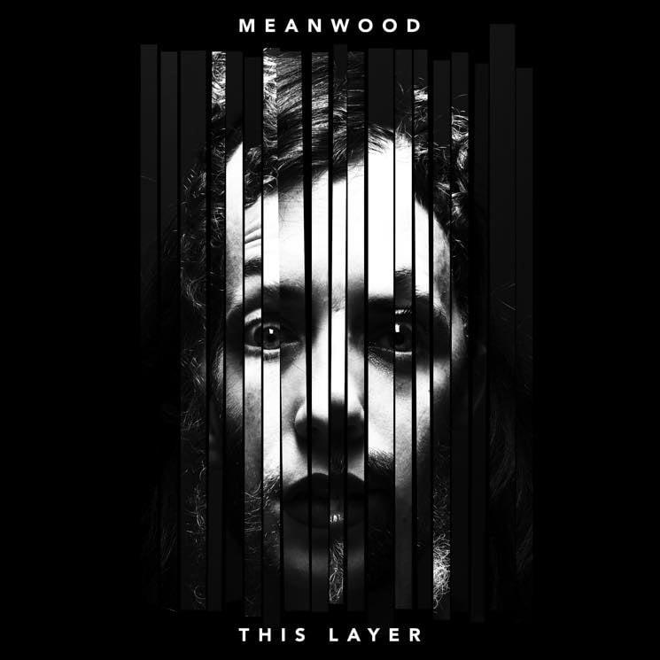 Meanwood 'This Layer' (album stream)
