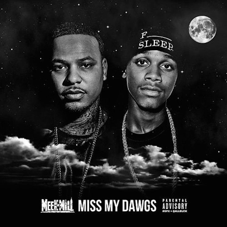 "Meek Mill ""Miss My Dawgs"""