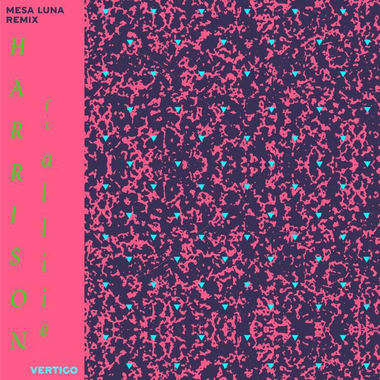 "Harrison ""Vertigo"" (ft. a l l i e) (Mesa Luna remix)"
