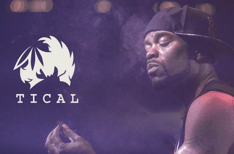 Method Man's New Cannabis Company Aims for Social and Economic Justice