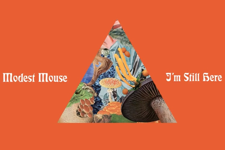 "Modest Mouse Share New Song ""I'm Still Here"""
