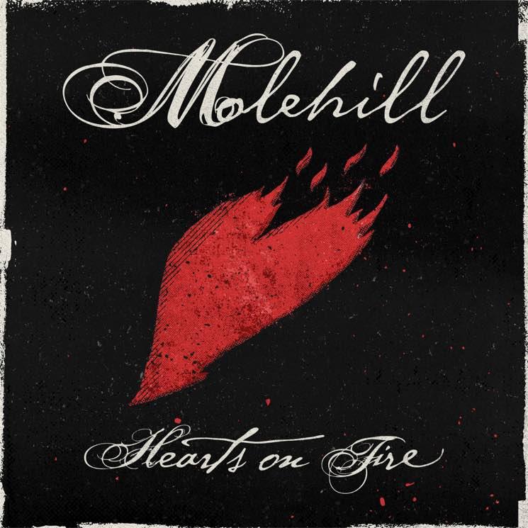 "Molehill ""Reverie"""