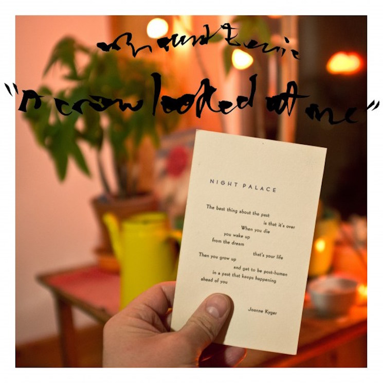 Mount Eerie 'A Crow Looked at Me' (album stream)