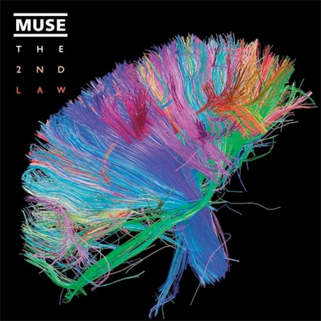 "Muse ""Madness"" (lyrics video)"