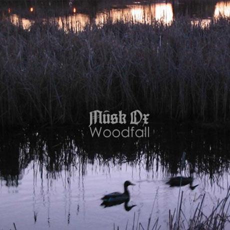 Musk Ox Woodfall