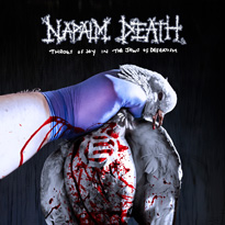 Napalm Death Prove They Have Some of Heavy Music's Deadliest Hooks on 'Throes of Joy in the Jaws of Defeatism'