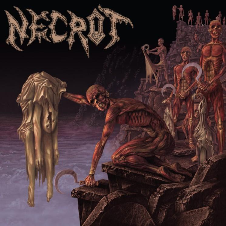 Necrot's Death Metal Is Relentlessly Full-Throttle on 'Mortal'