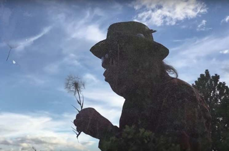 Neil Young + Promise of the Real 'Almost Always' (video)